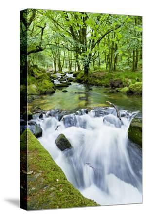 River Fowey, Goliath Falls, Looe, Cornwall, England, United Kingdom, Europe