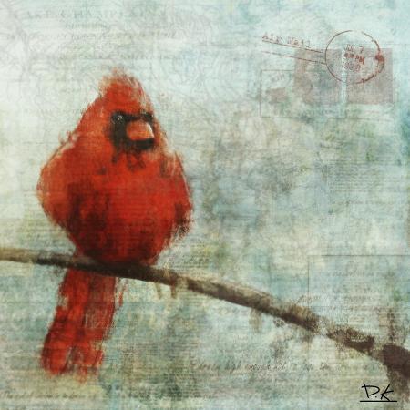 kay-daichi-bird-buddy-ii