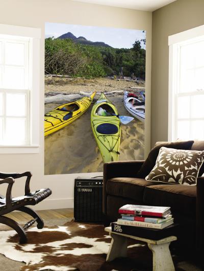 Kayakers on Sunken Reef Bay-Andrew Bain-Wall Mural