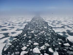 Arctic Landscape in the Hinlopen Strait by Keenpress