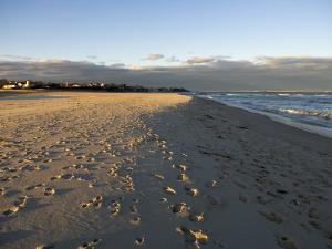 Cape Cod Foot Prints on Sandy Beach in Chatham, Massachusetts by Keenpress