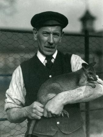 https://imgc.artprintimages.com/img/print/keeper-g-blore-holding-a-wallaby-at-london-zoo-october-1920_u-l-pul26m0.jpg?p=0