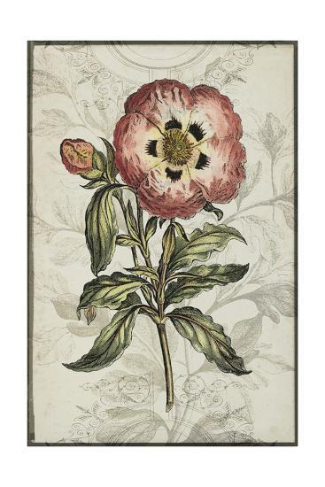 Keepsake Floral II-Jennifer Goldberger-Art Print
