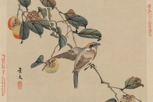 Bird Perched on a Branch from a Fruit Persimmon Tree. by Keibun Matsumura