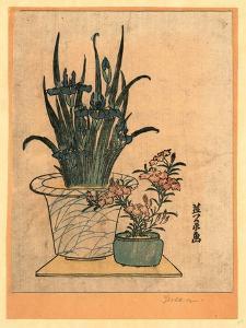 Hanashobu Ni Nadeshiko by Keisai Eisen