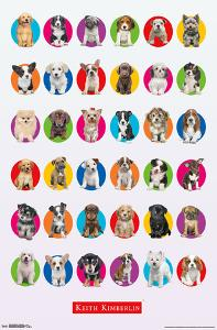 Keith Kimberlin - Puppy Grid