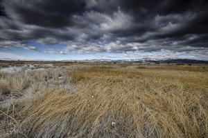Landscape in San Luis Valley, Colorado by Keith Ladzinski