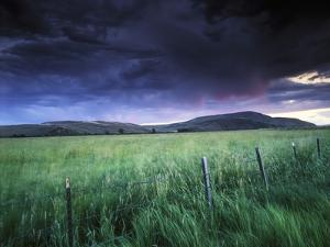 Spring Storm over a Field, Gunnison, Colorado by Keith Ladzinski
