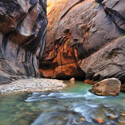 The Virgin River Rushing Through the Narrows in Zion National Park