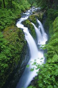 View of Sol Duc Falls in Olympic National Park, Washington by Keith Ladzinski