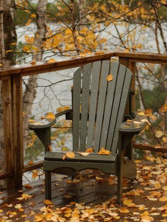 Autumn Leaves on Chair by Lake, Ontario, Canada
