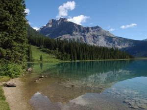 Edge of Mountain Lake in the Canadian Rockies by Keith Levit