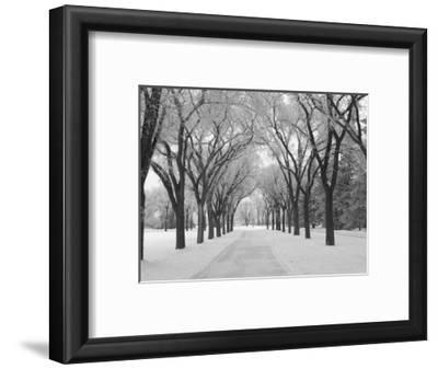 Winnipeg Manitoba, Canada Winter Scenes
