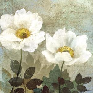 Anemone II by Keith Mallett