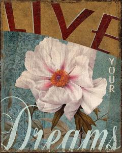 Live Your Dreams by Kelly Donovan