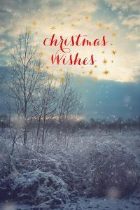 Christmas Wishes by Kelly Poynter