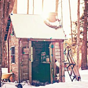 Holiday Shed by Kelly Poynter
