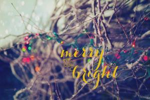 Merry and Bright by Kelly Poynter