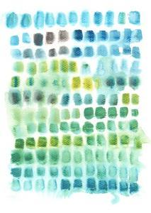 Shades of Parakeet by Kelly Witmer