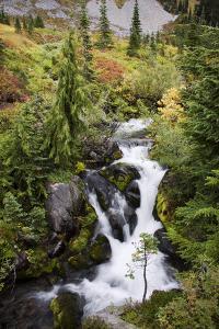 Mount Rainier National Park, Autumn Stream by Ken Archer