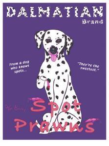 Dalmatian Spot Prawns by Ken Bailey