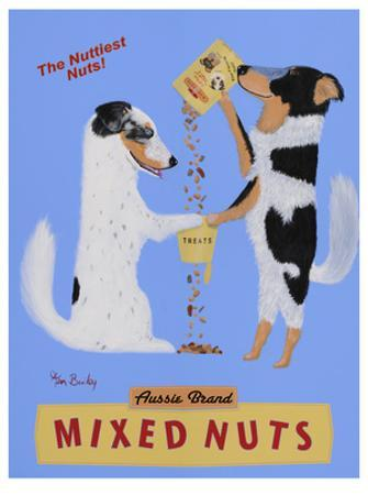 Mixed Nuts, Australian Shepherds