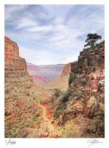South Kaibab by Ken Bremer