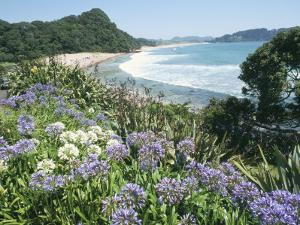Hot Water Beach, Coromandel Peninsula, South Auckland, North Island, New Zealand by Ken Gillham