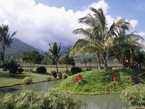 Tropical Plantation Garden, Maui, Hawaii, Hawaiian Islands, USA by Ken Gillham