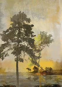 Beyond the Pines I by Ken Hurd