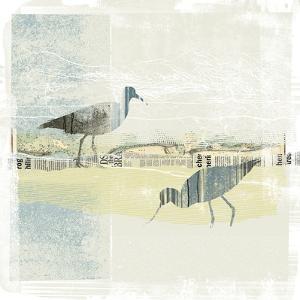 Coastal Birds I by Ken Hurd
