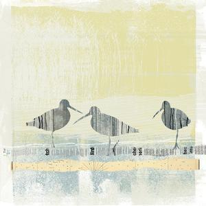 Coastal Birds II by Ken Hurd
