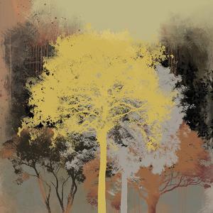 Forest Glow I by Ken Hurd