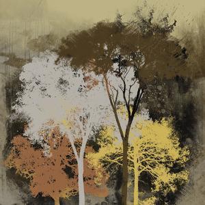 Forest Glow II by Ken Hurd