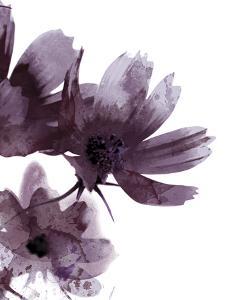 Moonflower I by Ken Hurd