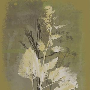 Natures Harmony I by Ken Hurd
