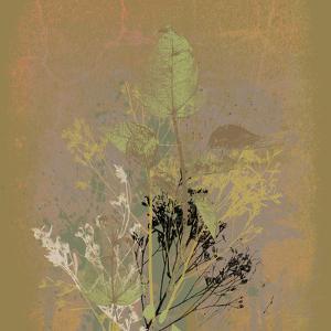 Natures Harmony IX by Ken Hurd