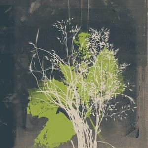 Natures Harmony VII by Ken Hurd