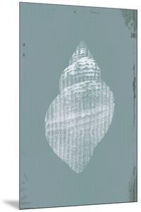 Ocean Fade - Shell by Ken Hurd