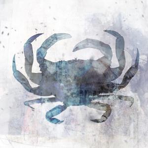 Coastal Mist Crab by Ken Roko