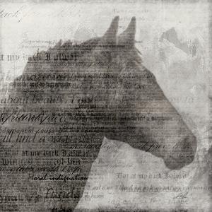 Equestrian Story 1 by Ken Roko