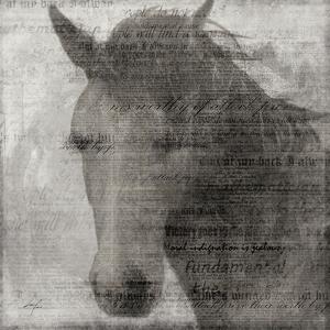 Equestrian Story 2 by Ken Roko