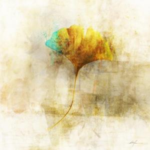 Falling Ginko Leaf by Ken Roko