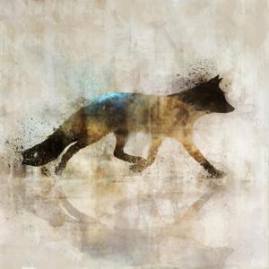 Fox Walk I by Ken Roko