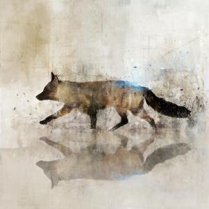 Fox Walk II by Ken Roko