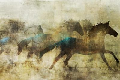 Horses, Beautiful and Free by Ken Roko