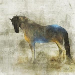 Lone Star 4 by Ken Roko