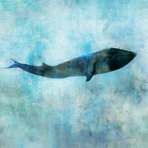 Ocean Whale 1 by Ken Roko
