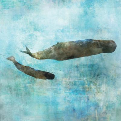 Ocean Whale 2 by Ken Roko
