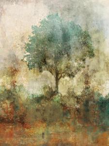 Shady Tree by Ken Roko